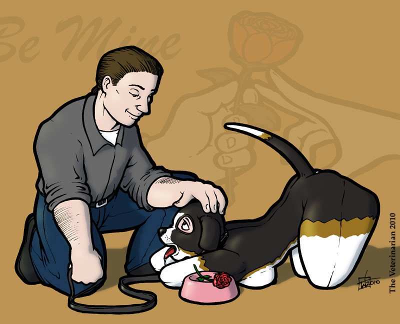 bemineveterinarian2010.jpg